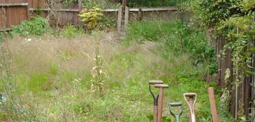 over-grown-garden-goodgrow-uk