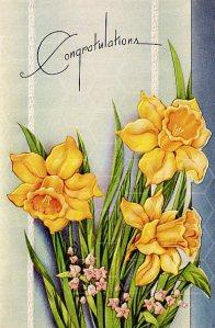 congrats daffodils